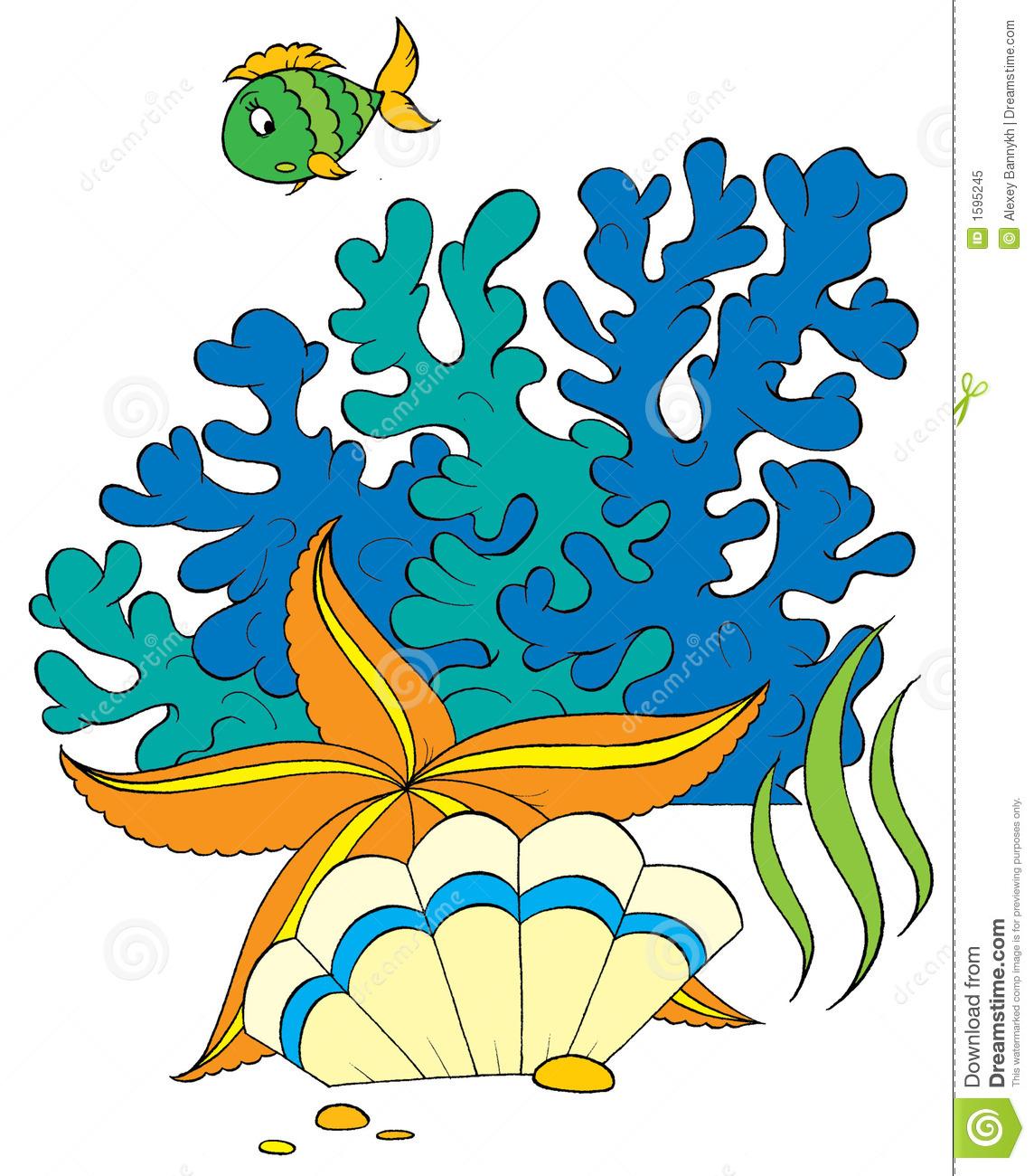 1144x1300 Top 77 Sea Star Clip Art