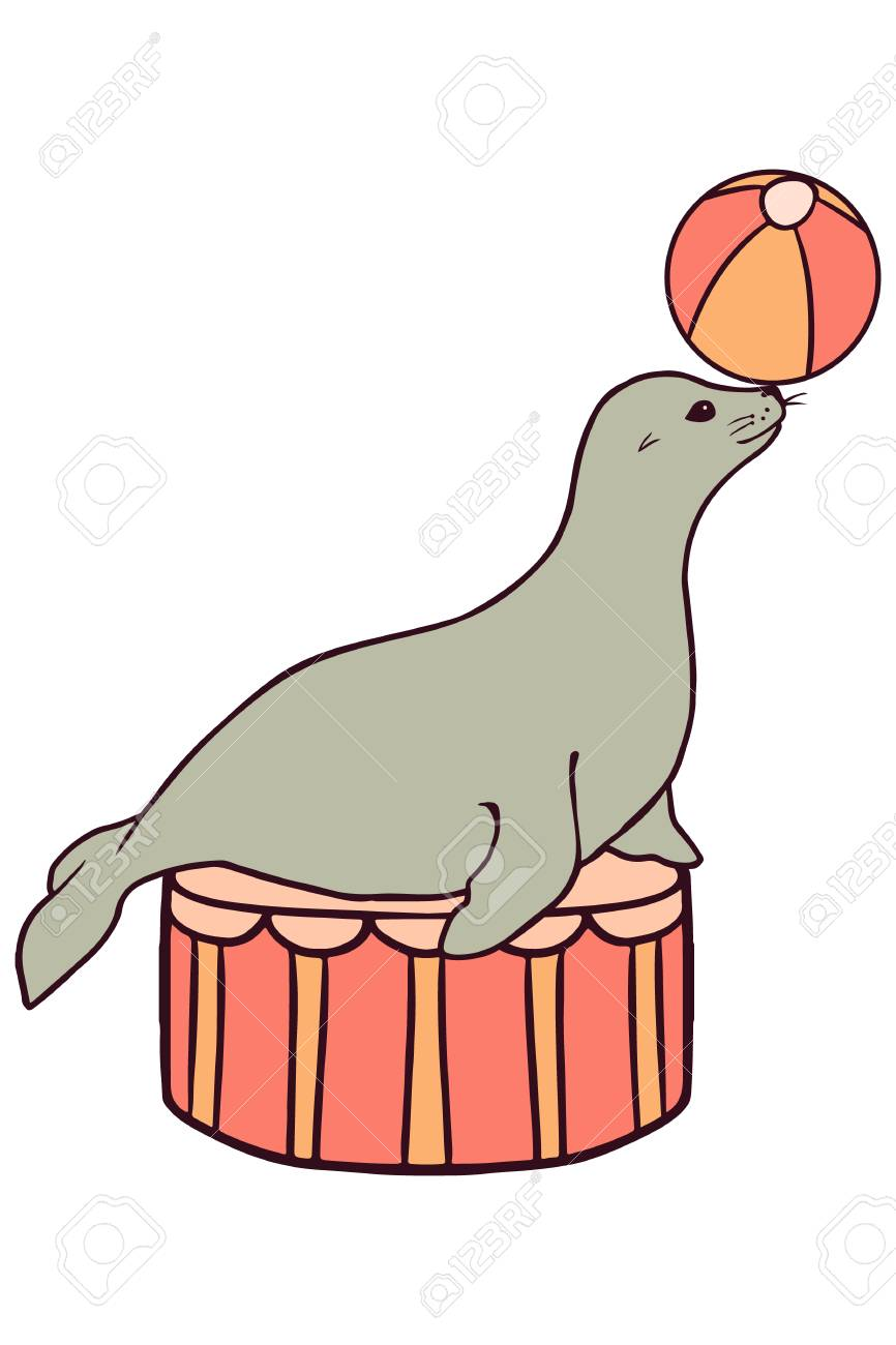 866x1300 Sea Lion Clipart Circus Acts