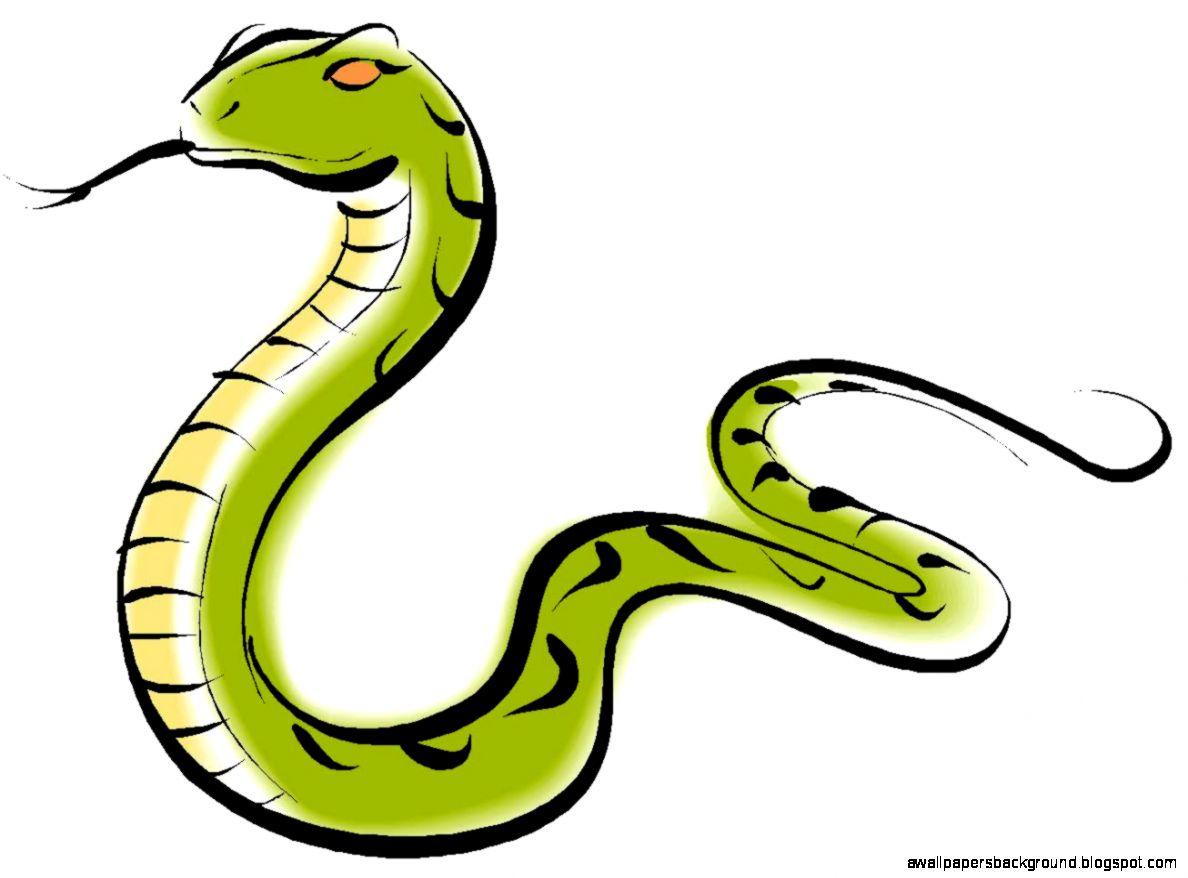1188x878 Anaconda Clipart Living Thing