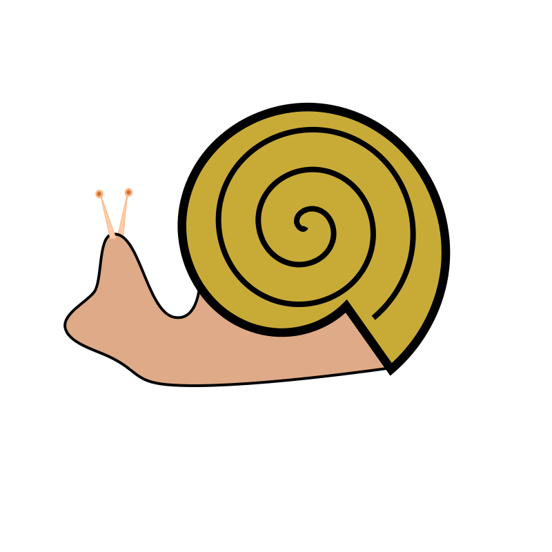 sea snail clipart at getdrawings com free for personal use sea rh getdrawings com snail clipart images snail clipart free
