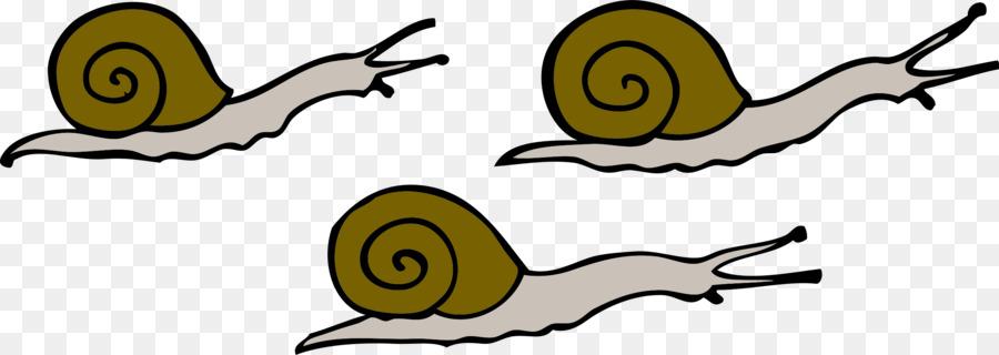 900x320 Snail Clip Art