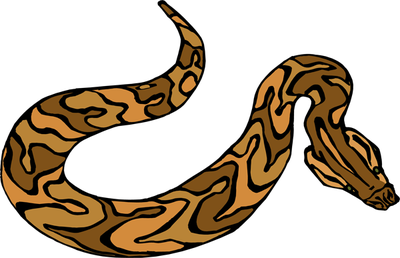 400x258 Snake Clipart, Suggestions For Snake Clipart, Download Snake Clipart