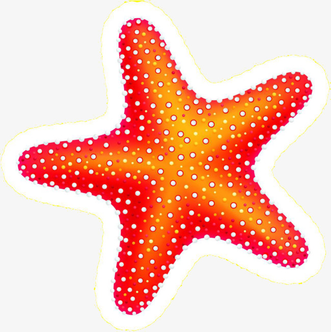 650x651 Starfish Clipart Black And White. X Drawing Of A Starfish
