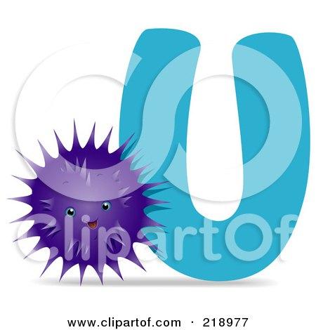 450x470 Royalty Free (Rf) Sea Urchin Clipart, Illustrations, Vector