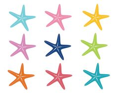 236x188 Starfish And Sea Urchins Collection On Sand Background. Vector