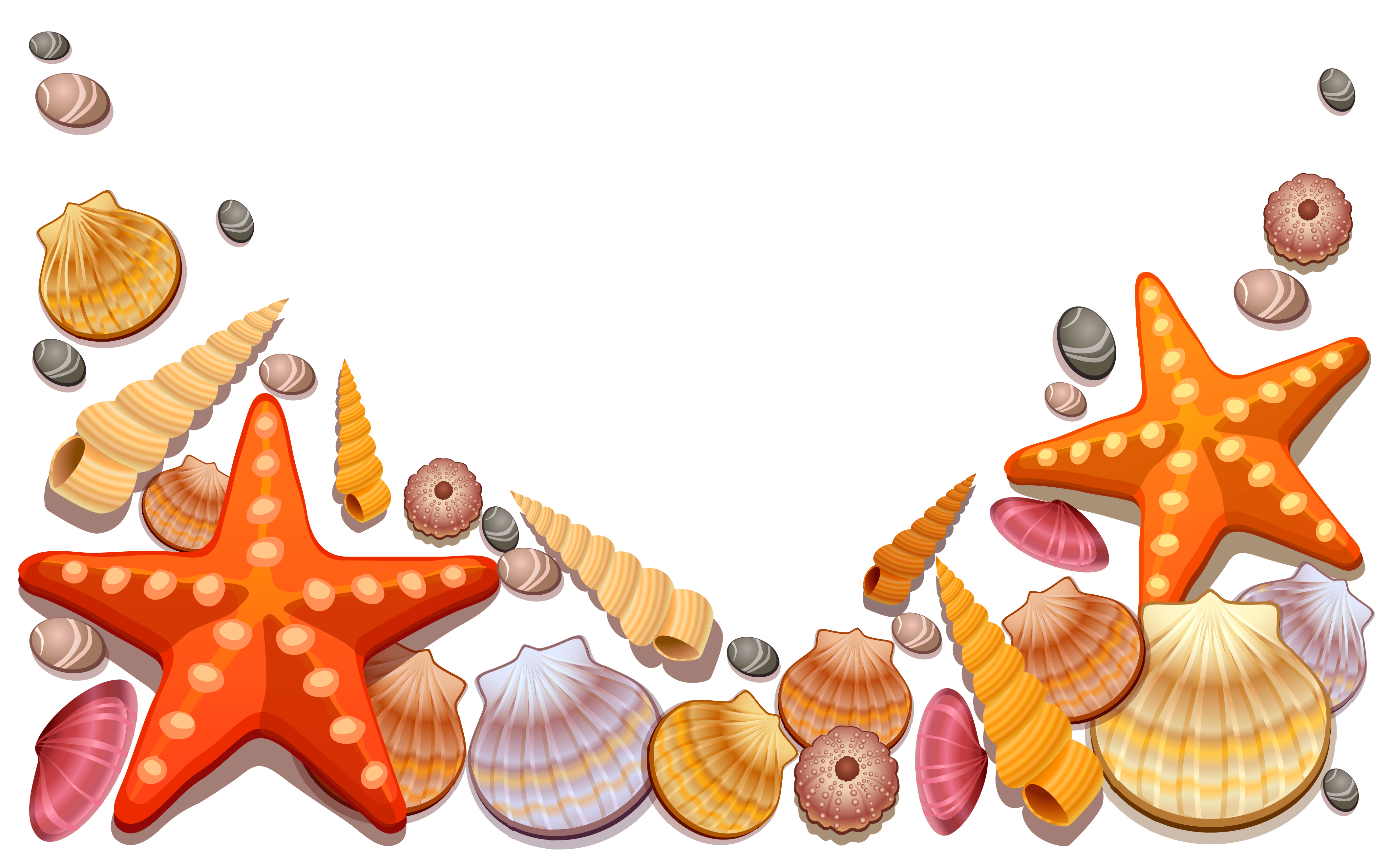 seashell clipart at getdrawings com free for personal use seashell rh getdrawings com seashells clipart png seashell clip art black and white