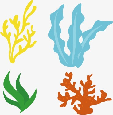Seaweed Clipart at GetDrawings.com | Free for personal use Seaweed ...