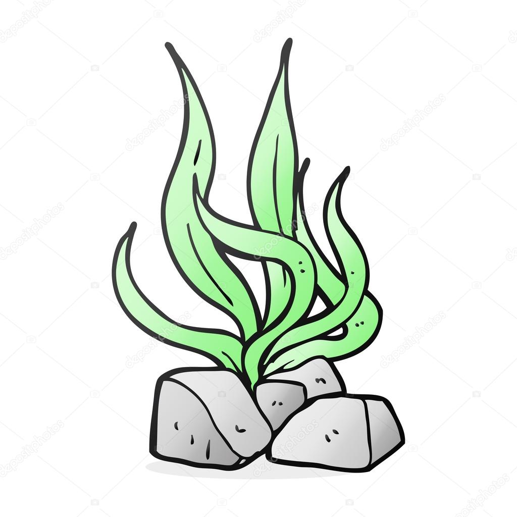 1024x1024 Drawn Seaweed Cartoon Free Collection Download And Share Drawn