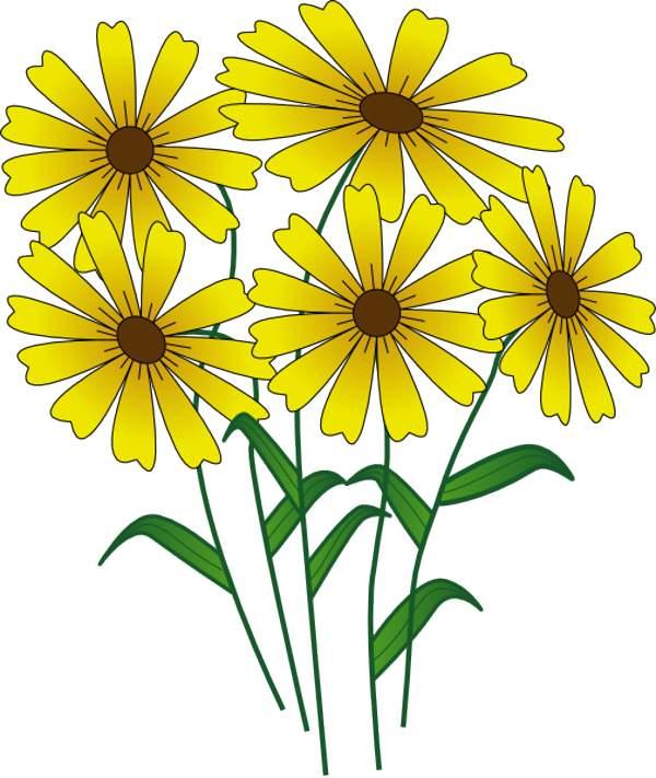 600x711 September Flower Clipart Amp September Flower Clip Art Images