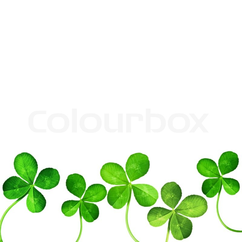 shamrock clipart free at getdrawings com free for personal use rh getdrawings com