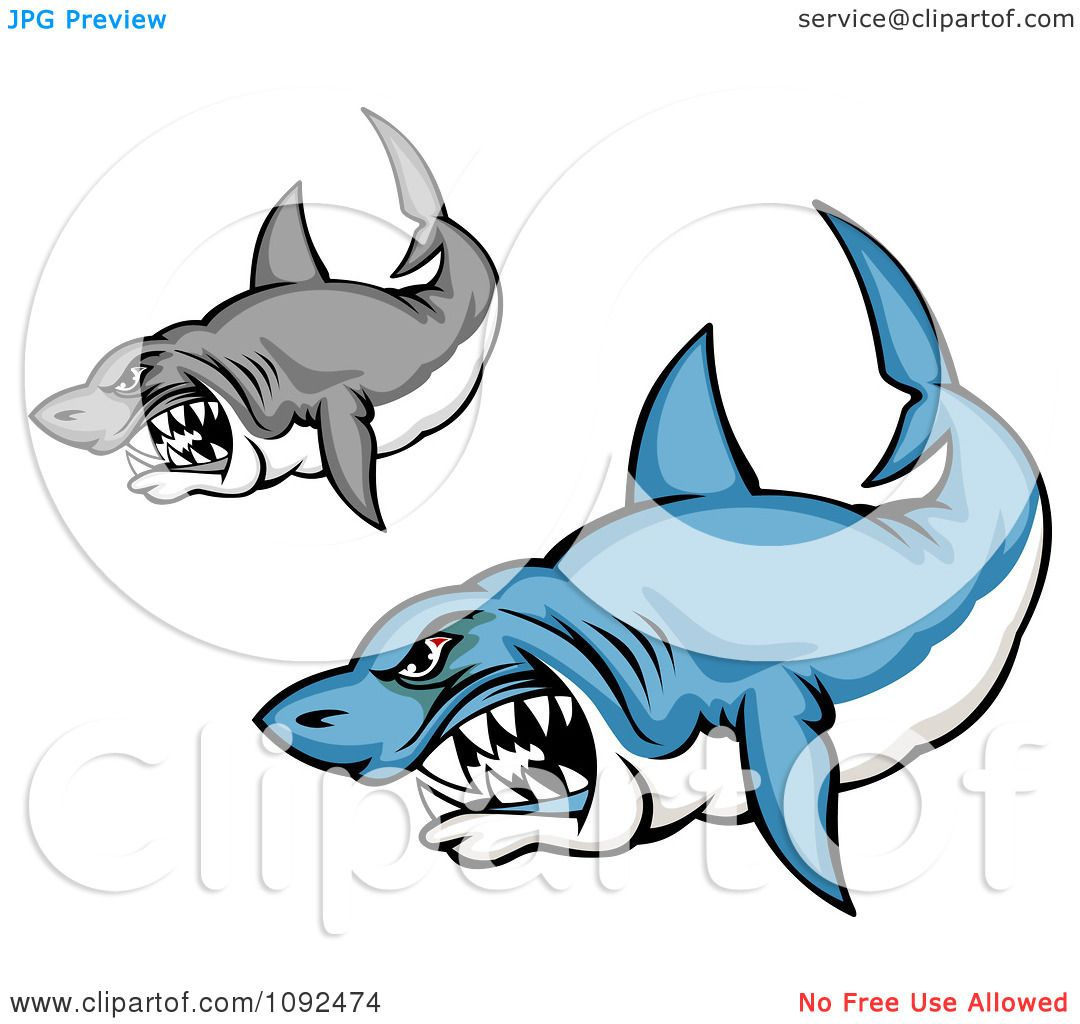 1080x1024 Great White Shark Clipart