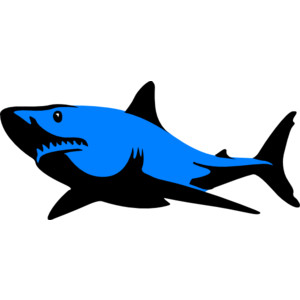 300x300 Image Of Shark Clipart