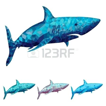 450x450 Shark Pictures To Colour Shark White Colour Shark Colouring Pages