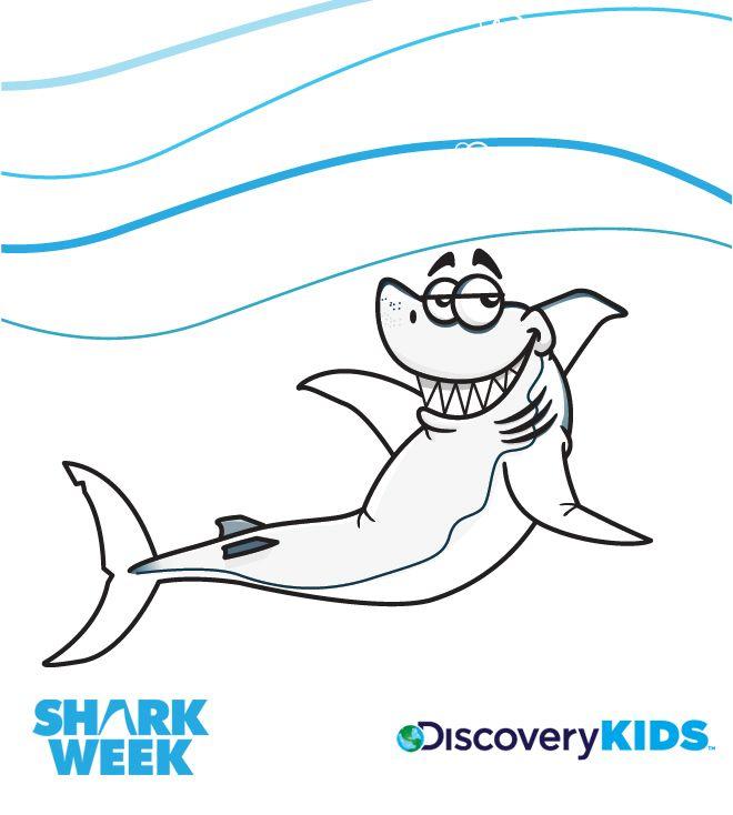 660x734 Sitting Shark Coloring Pages Shark, Pet Shop