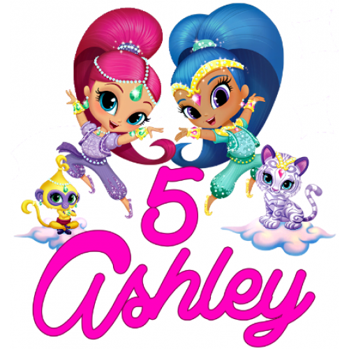 500x500 Shimmer And Shine Personalized Custom T Shirt Iron On Transfer