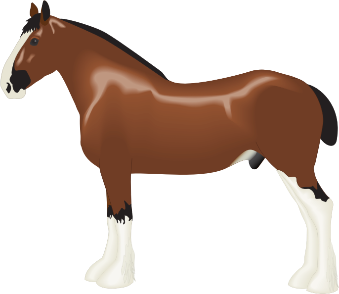 686x594 Eft For Depressed Shire Horse