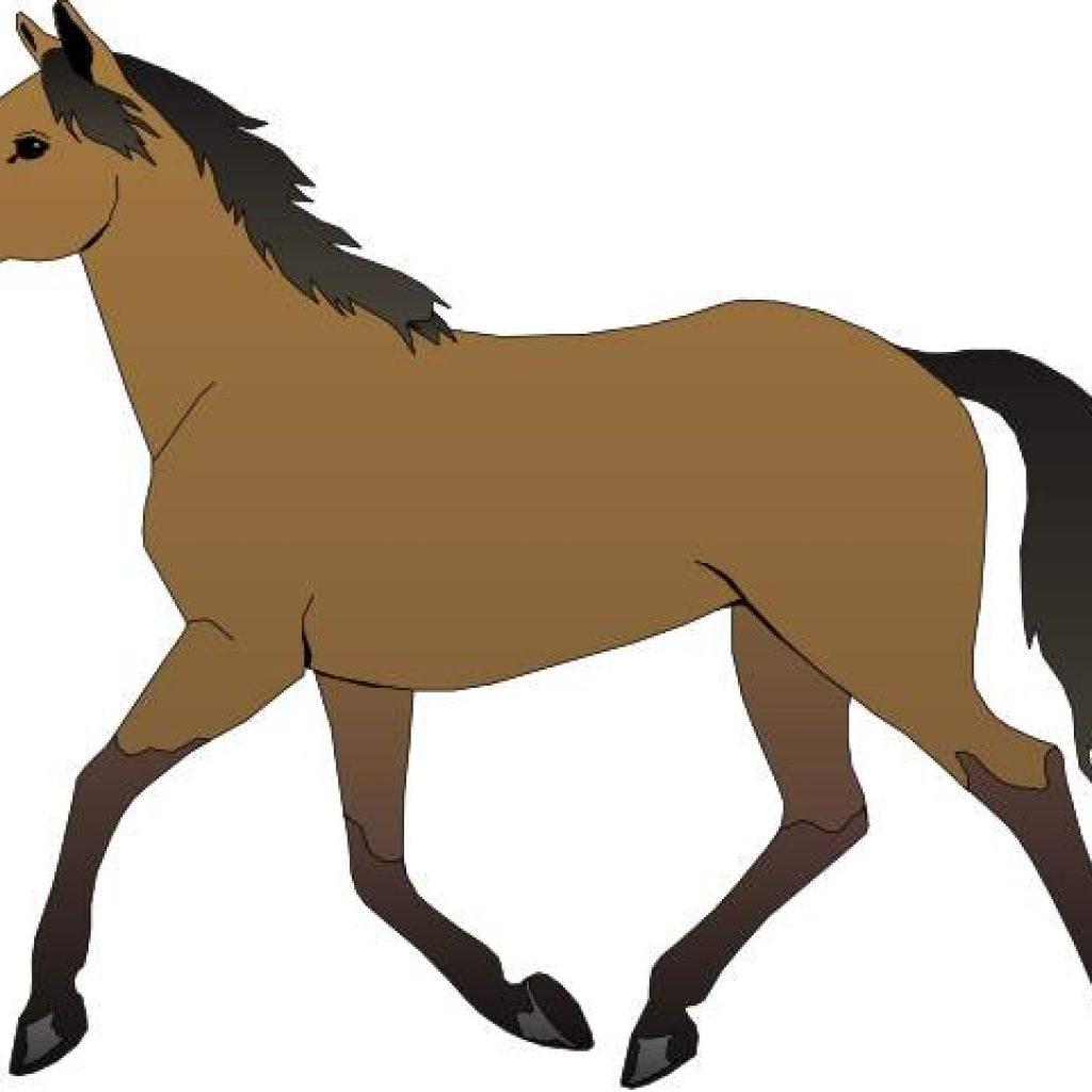 1024x1024 Horse Images Clip Art Free