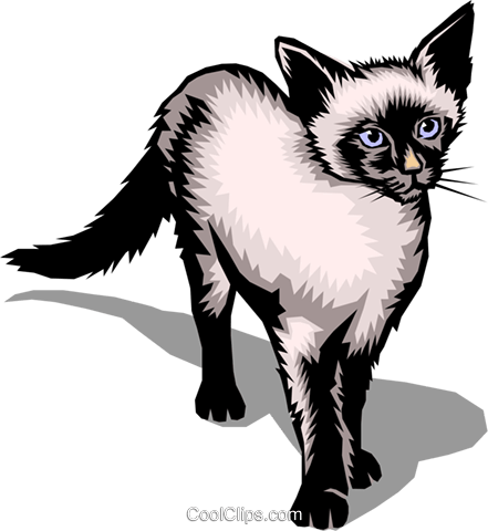 441x480 Siamese Cat Royalty Free Vector Clip Art Illustration Anim0124