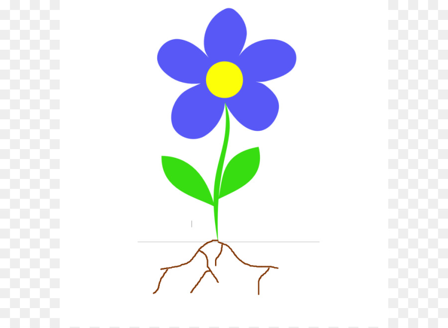 900x660 Root Plant Stem Flower Clip Art