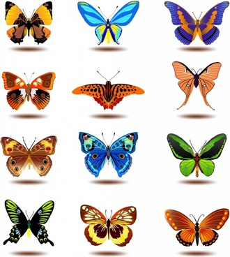 330x368 Butterfly Free Vector Download (2,008 Free Vector) For Commercial