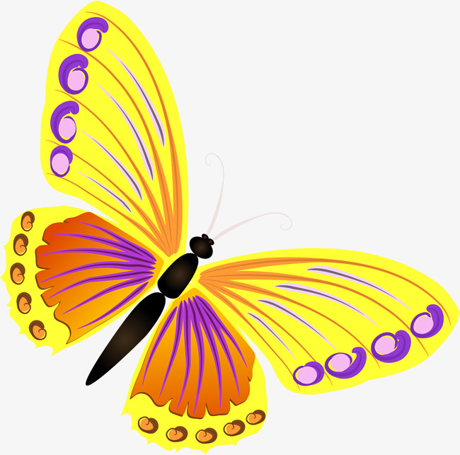 650x643 Yellow Butterfly, Yellow, Simple, Butterfly Png Image And Clipart