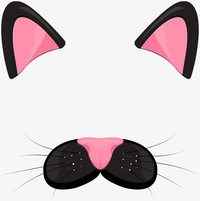 650x652 Cat Png Images, Download 16,228 Png Resources With Transparent