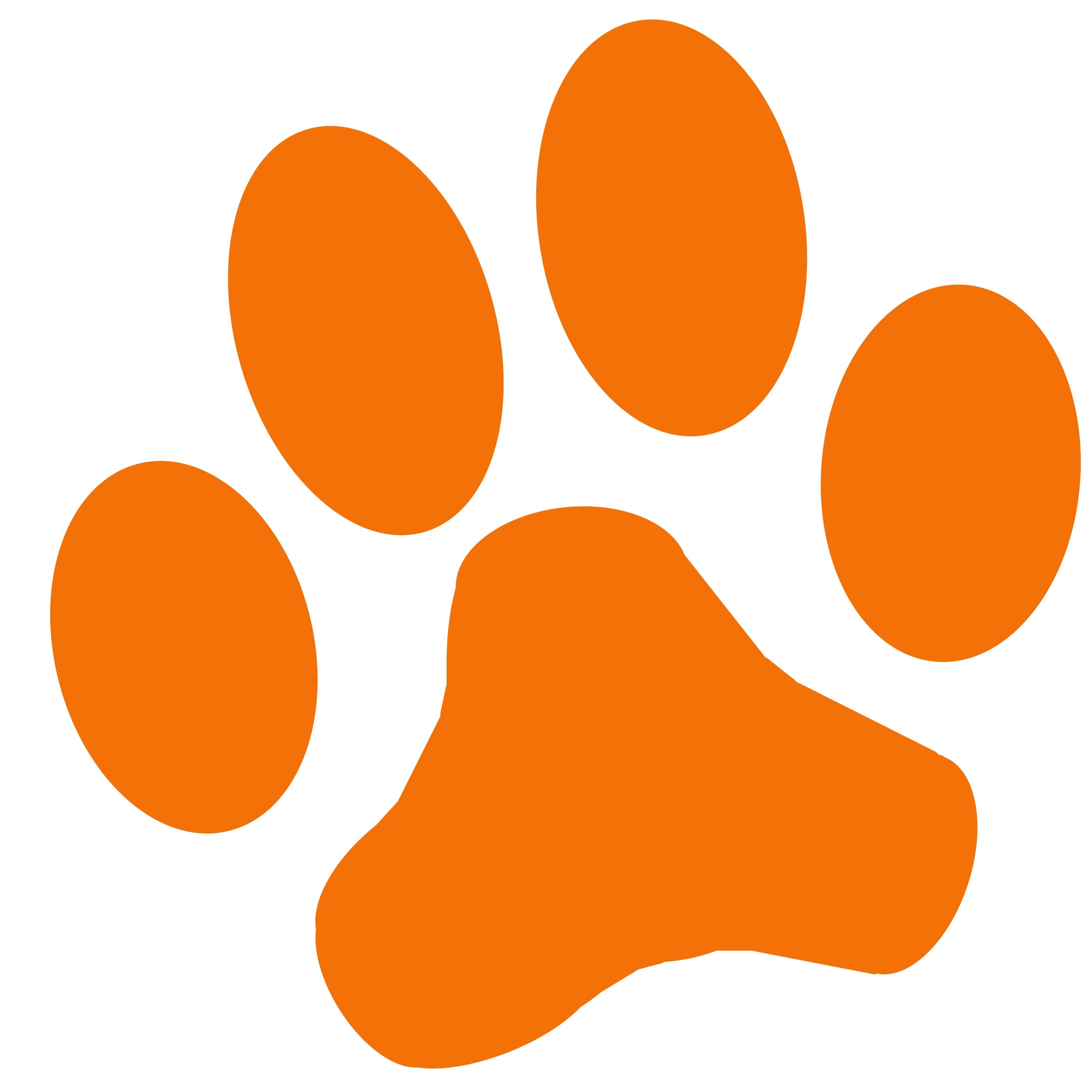 3000x3000 38 Dog Paw Clipart Images Free Graphics Icons And Simple Wildcat