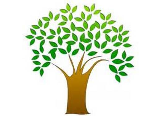 500x373 Simple Clipart Tree