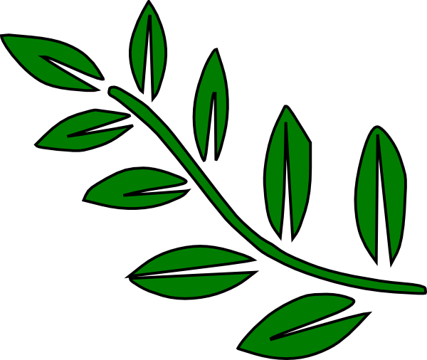 600x506 Simple Twig With Leaves Clipart Best Pattern Design