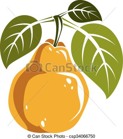 414x470 Single Yellow Simple Vector Pear With Green Leaves, Ripe