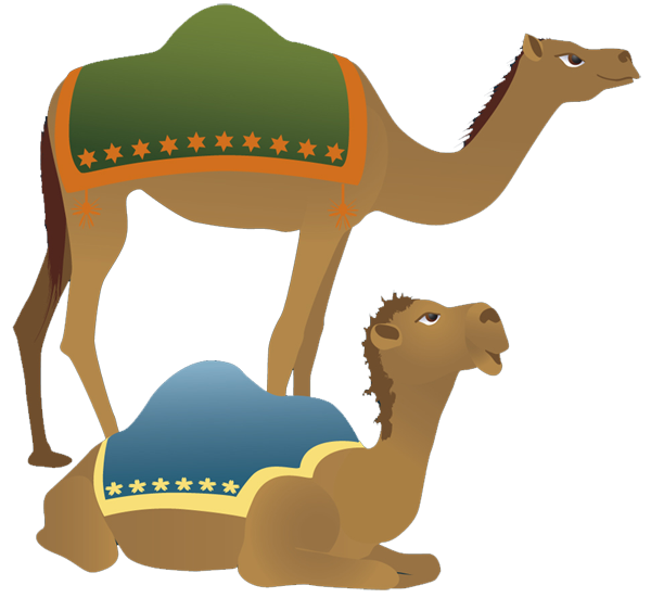 600x551 Camels Clipart Nativity Character