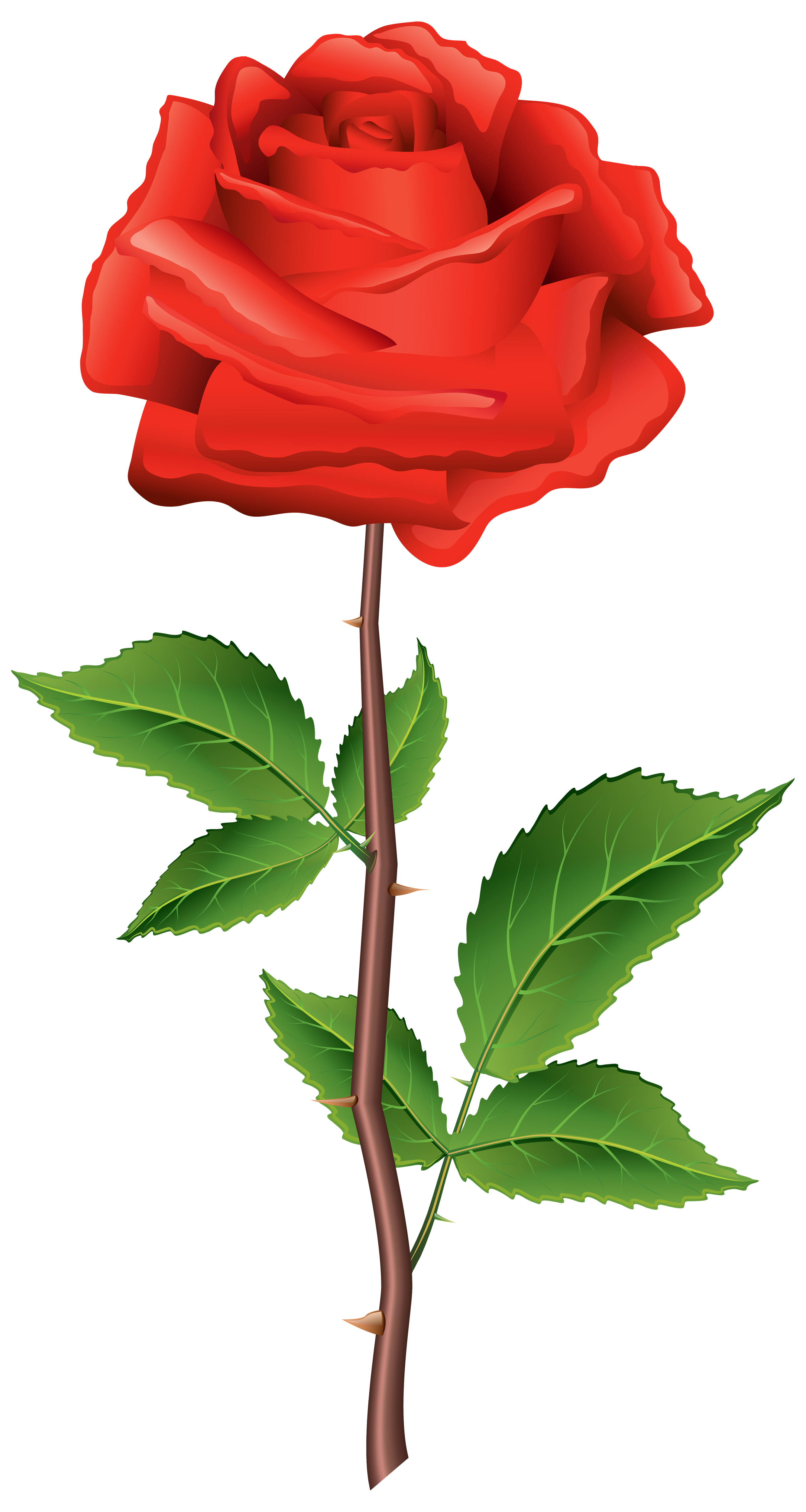 Simple Rose Clipart At Getdrawings Com Free For Personal Use