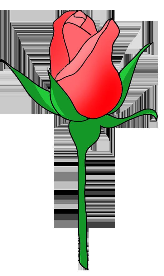 526x886 Rose Flower Image Gallery Useful Floral Clip Art 4