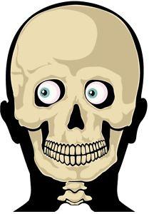 209x300 Funny Skeleton Face Bumper Sticker Toolbox Sticker Lunch Box Hard