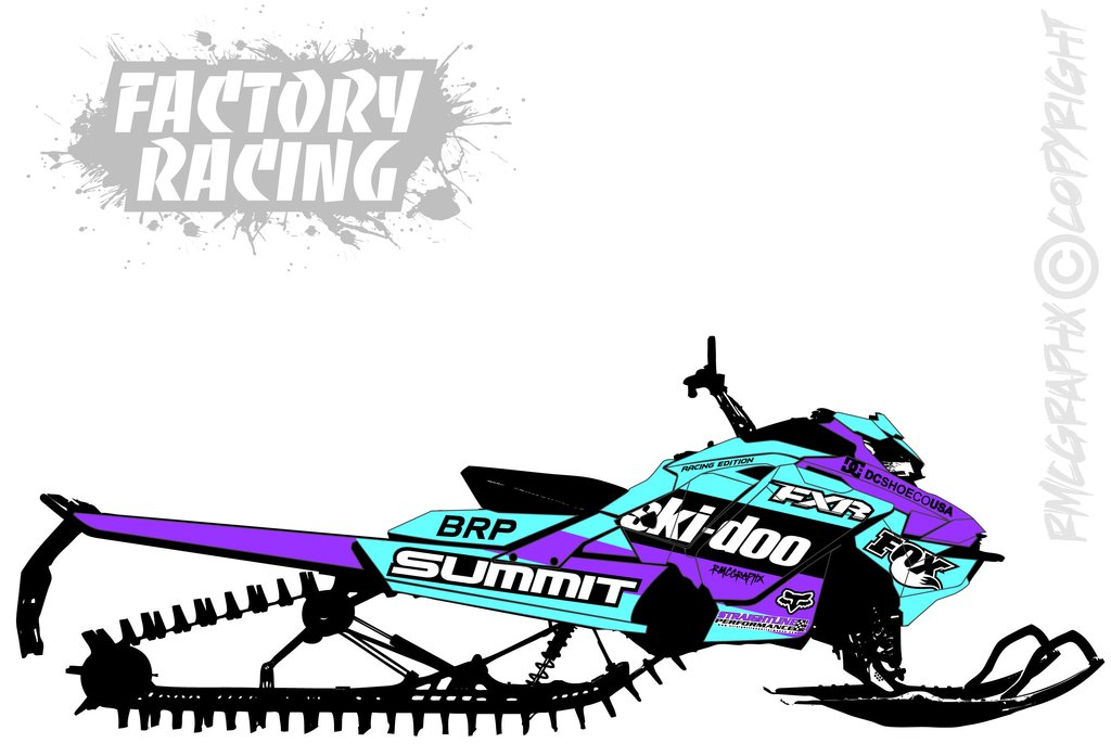 """Ski-Doo Angry Bee Large Pairs Decal 12/"""" Each"""