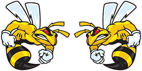 466x234 Ski Doo Angry Bee Large Pairs Decal 12 Each Fast