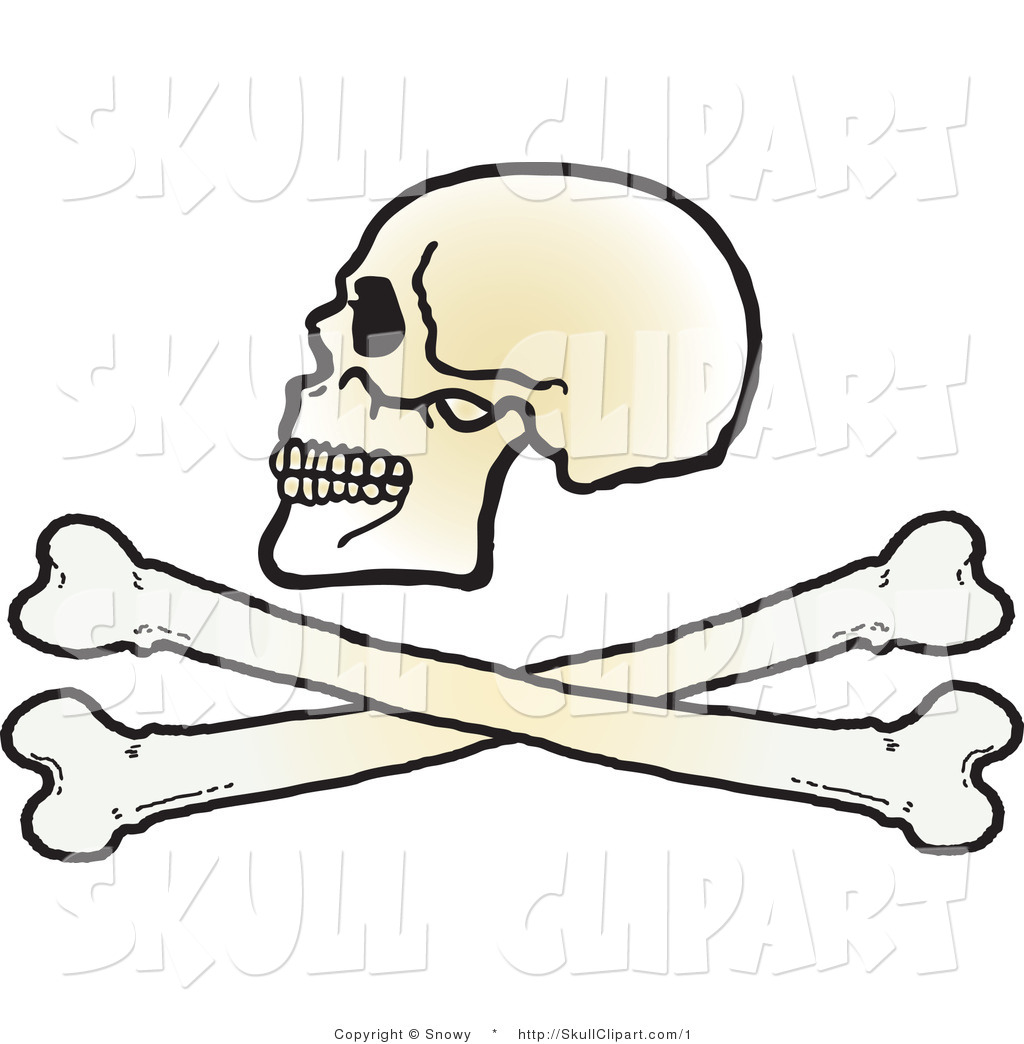 1024x1044 Vector Clip Art Of A Skull Over Cross Bones By Snowy