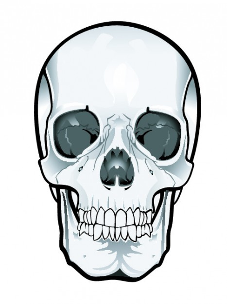467x626 Frontal Skull Clipart Vector Free Download