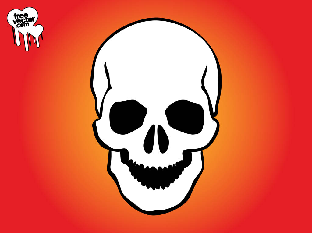 1024x765 Skull Images Graphics Group