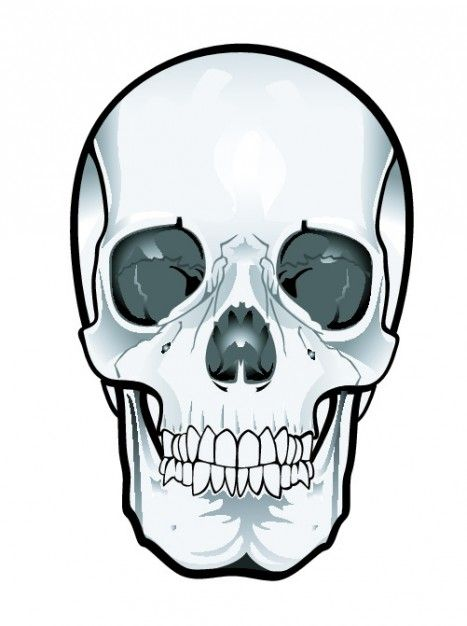 467x626 Frontal Skull Clipart Holloween Art Images And Artsy