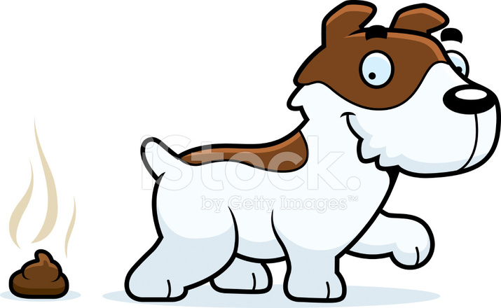 715x440 Jack Russell Terrier Clipart Small Dog