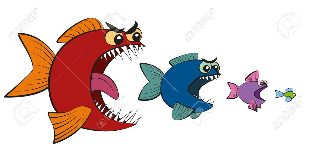 1300x649 Small Fish Clipart