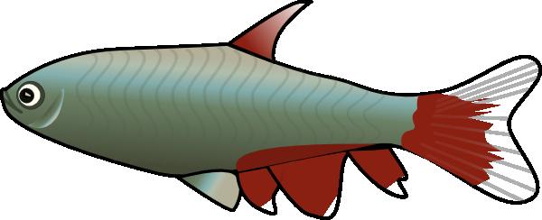 600x244 Tetra Fish Clip Art