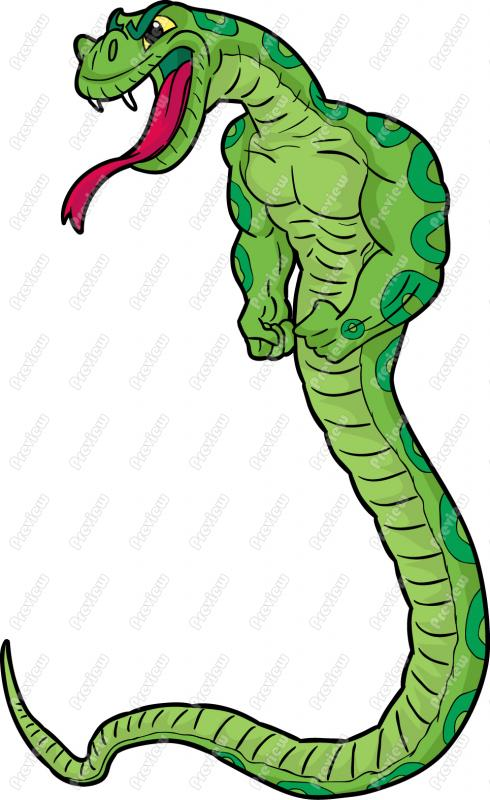 490x800 snake clip art