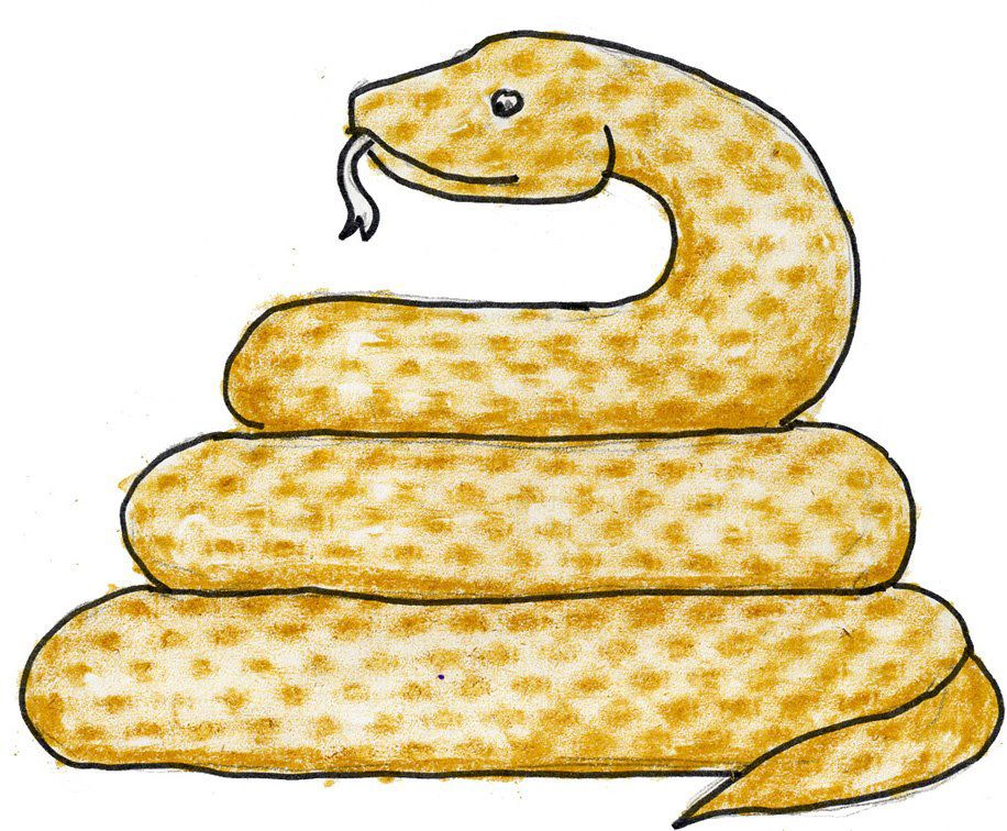 916x756 Art Projects For Kids Draw A Snake With Texture Animal Art