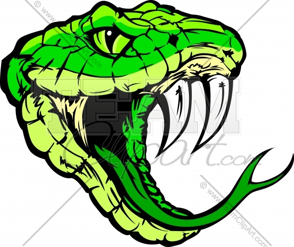 590x496 Python Clipart Coiled Snake