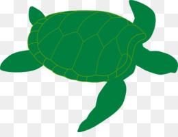 260x200 Green Sea Turtle Clip Art