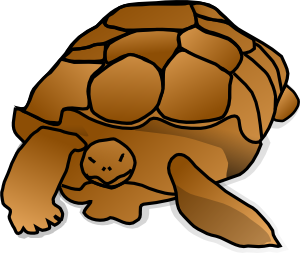300x253 Turtle Cartoon Clip Art