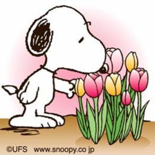 515x515 Snoopy Spring Flowers