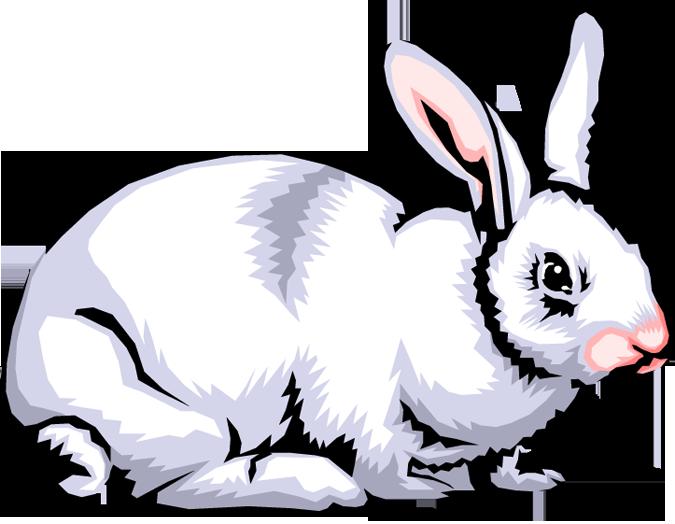 675x524 Rabbit Clip Art In Public Domain Clipart Panda